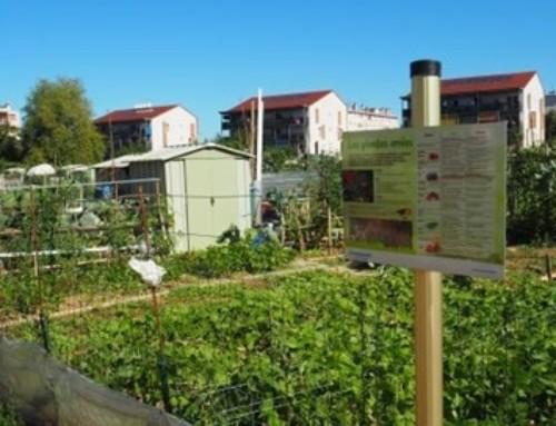 Un conseil de développement durable à Annemasse