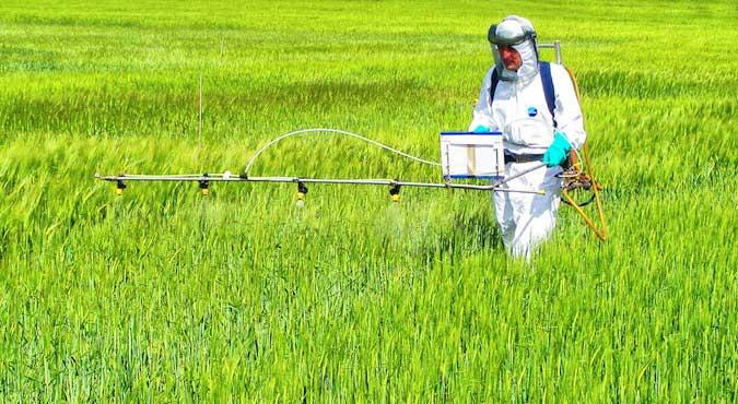glyphosate-avancee-herbicide