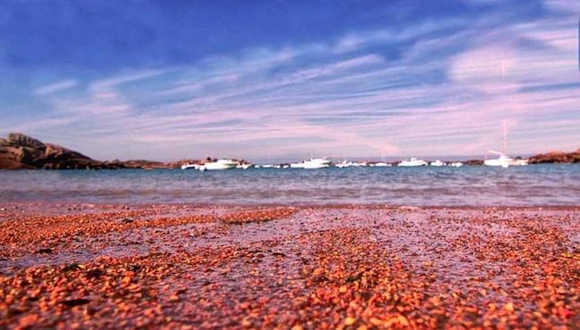 Des plages bretonnes deviennent rouge