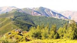 Monts Dardeche