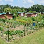 Angoul Me 16 Jardins Familiaux Fr Geneuil Pano 2014