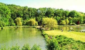 Agence de l'eau et aménagement des territoires avec l'exemple d'un lac