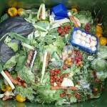 une poubelle remplie de fuits et légumes