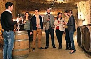 Degustation de vins dans une cave