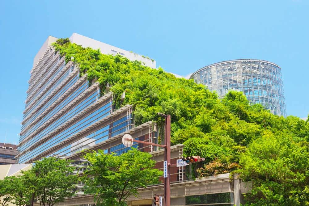 un immeubles aux toits végétalisés