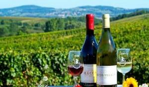 Deux bouteilles de vin de Bourgogne