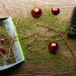 des boules de Noël er des branches de sapins par terre
