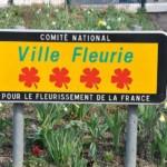 panneau Village fleuri