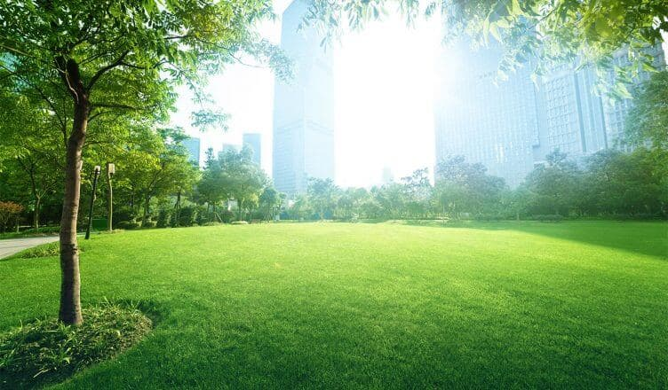 une ville verte avec des espaces verts et des immeubles