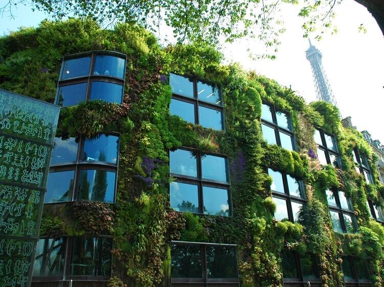 La Vegetalisation Des Batiments Composer Avec La Nature En Ville