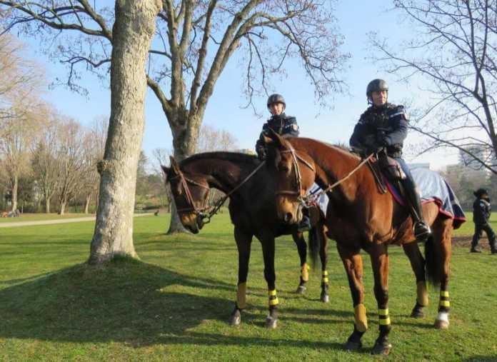deux policiers sur leurs chevaux