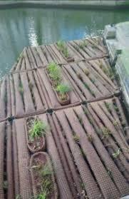 un radeau végétalisé flottant sur le canal Saint Martin