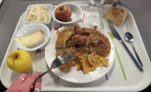 plateau repas avec du plastique facteur de perturbateurs endocriniens