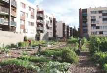 un immeuble de la Grande-Synthe avec au pied, un jardin
