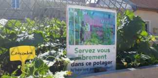 un jardin avec un panneau indiquant que l'on peut se servir