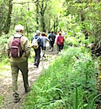 La randonnée pédestre est une activité particulièrement appréciée en France.