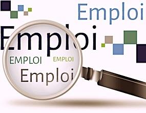 la région Auvergne souhaite unifier la répartition des emplois dans sa région.