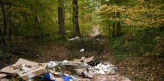 des sacs poubelles dans une forêt