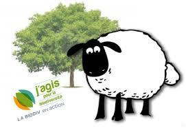 le dessin d'un mouton