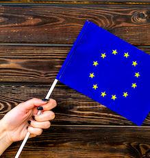 Les élections européennes semblent mettre en avant deux grands partis.