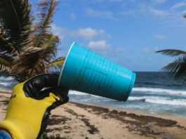 un gobelet en plastique sur une plage