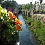 Montivilliers: des fleurs et de l eau