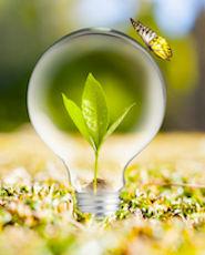 L'énergie présentée comme verte est difficile à tracer.