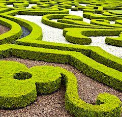 Pendant trois jours, 2.400 jardins français seront ouverts au public.