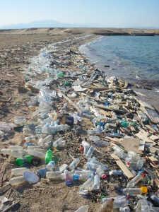 vue d'une plage en bordure de mer polluée par les déchets