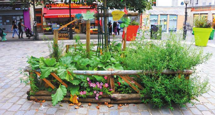 la végétation en ville