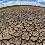 la terre craquelée par la sécheresse