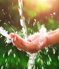 Préserver l'eau et mieux l'utiliser étaient deux des objectifs des Assises de l'eau.