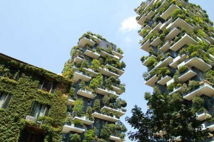 une ville verte en végétalisation