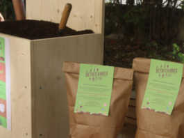 A Villeurbanne, la collecte des biodéchets