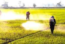 Cropped Les Distances De Se Curite Pour Le Pandage Des Pesticides Fait De Bat 1