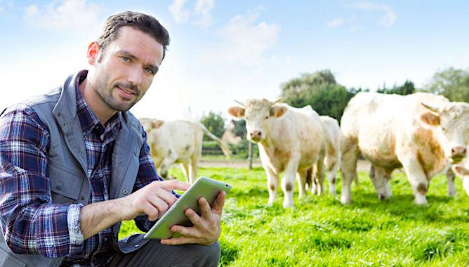 Agrikolis est un nouveau réseau de points-relais qui aide les agriculteurs.
