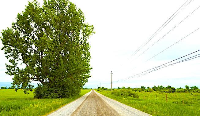 La qualité du réseau de téléphonie mobile s'améliore nettement dans les zones rurales.