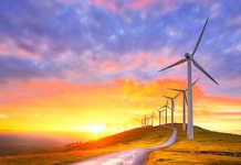 Les énergies renouvelables sont présentées comme une alternative à l'énergie nucléaire. Mais seront-elles suffisantes ?