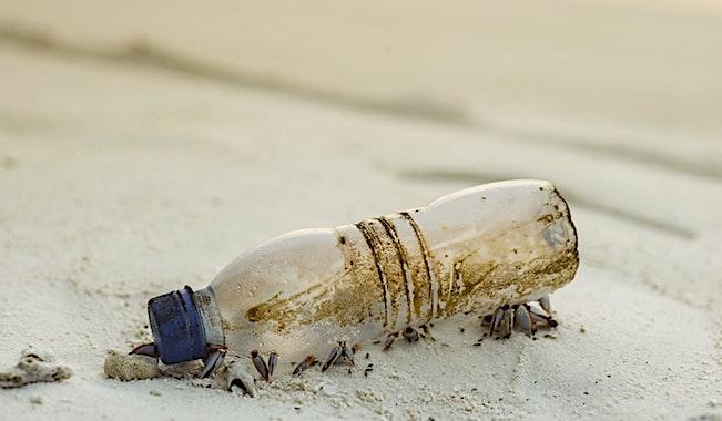 Les emballages plastique à usage unique représentent un danger écologique.
