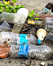 Les emballages en plastique à usage unique représentent un danger pour l'environnement.