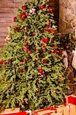 Les sapins de Noël naturels remportent haut la main le match environnemental contre les sapins artificiels.