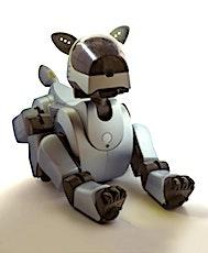 Le bilan du CES 2020, à Las Vegas, a montré que la robotique était toujours à l'honneur.