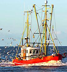 Les incertitudes du Brexit soulèvent de nombreuses interrogations pour les pêcheurs français.