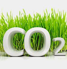 Obtenir un bon bilan carbone est devenu un objectif pour de nombreux grands groupes américains.